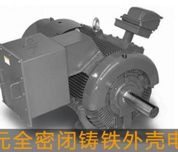 东元高压电机全密闭铸铁外壳电机